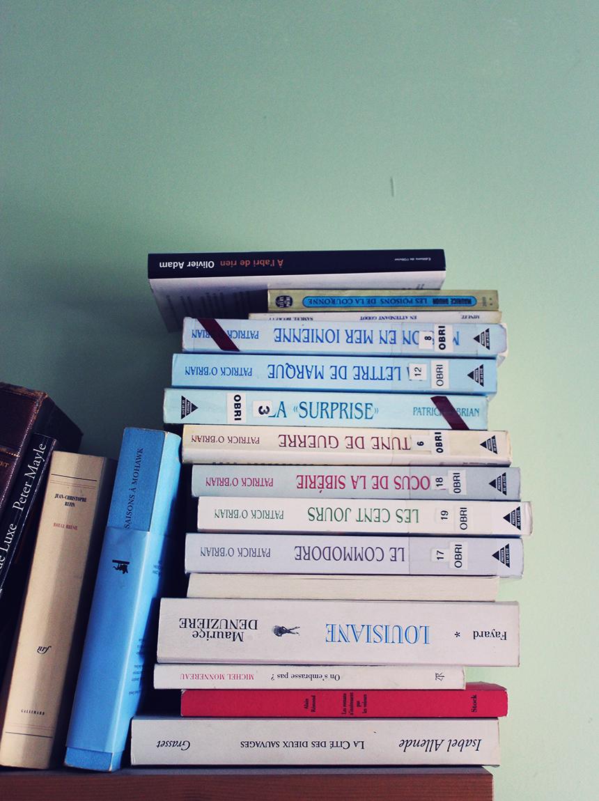 #003 - Pile de bouquins