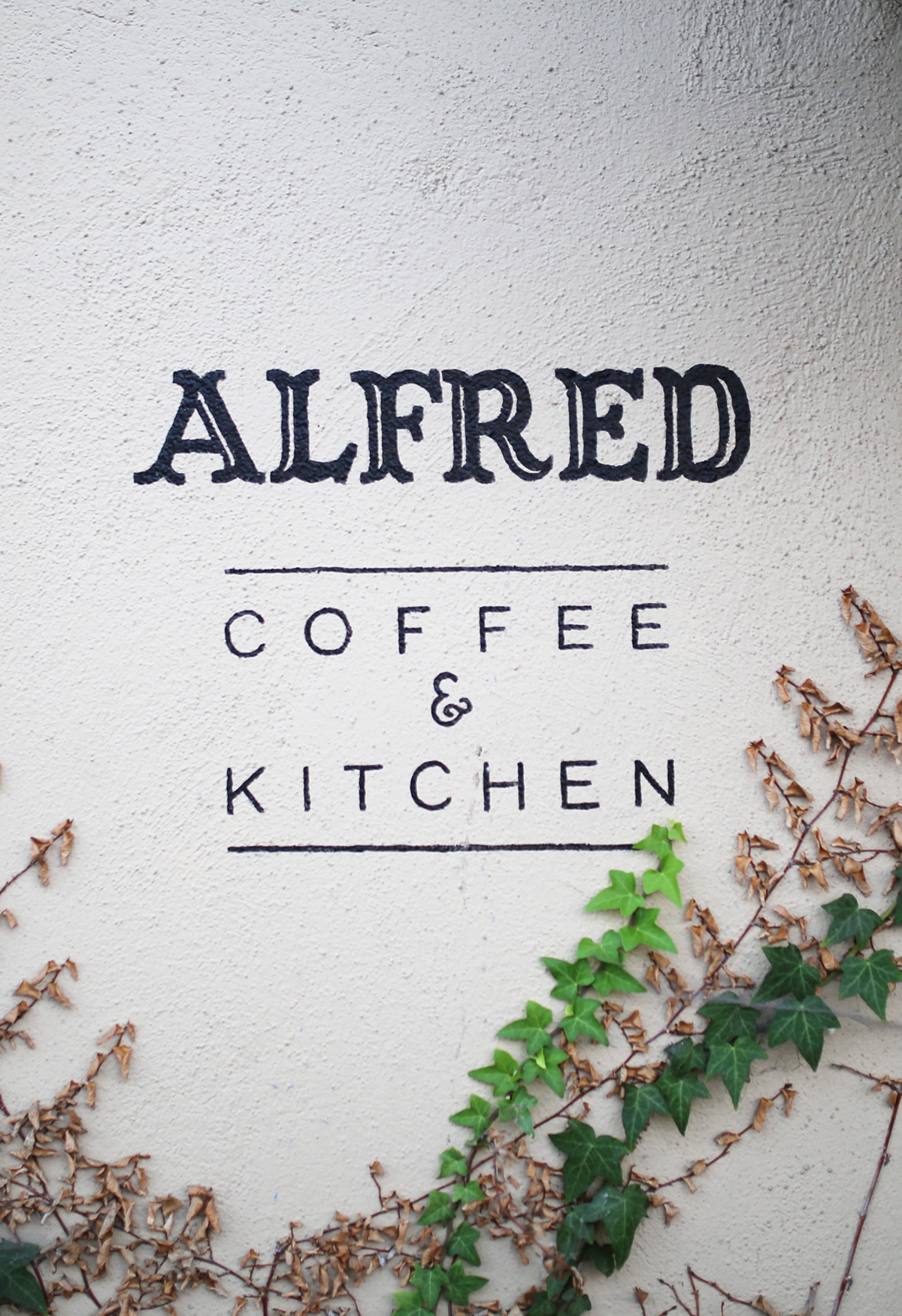 alfred-016